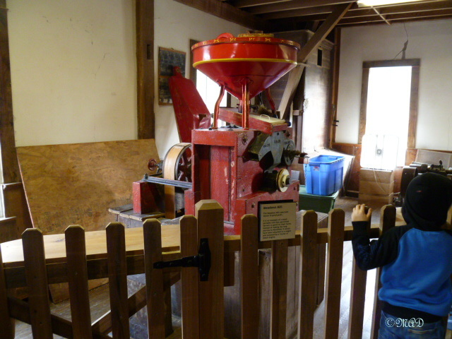 Various grain implements.