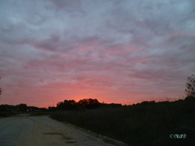 October 26, 2013 Blue and pink skies 004