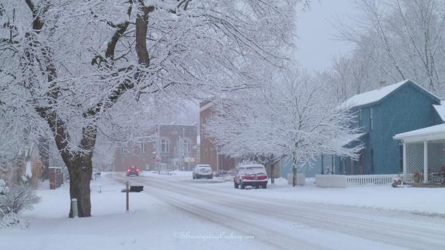 December 14, 2013 Snow 008