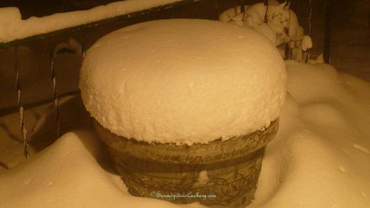 January 5, 2014 Evening Snow 011