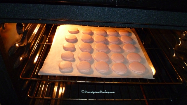 April 15, 2014 Macarons 002